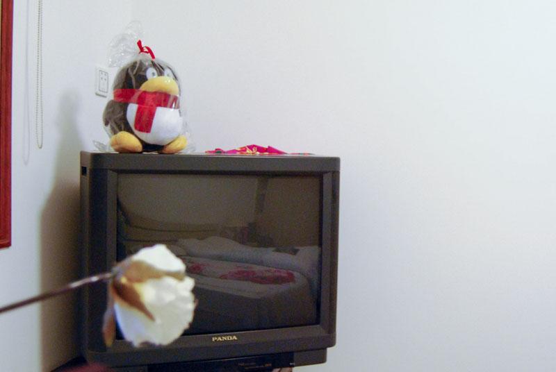 放在电视上的QQ布偶